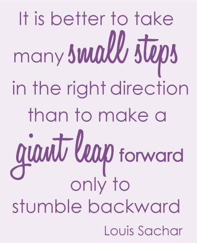 It is better to take many small steps in the right direction than to make a giant leap forward only to stumble backward louis Sachar